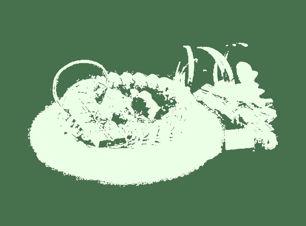 Gamberini pasticceria